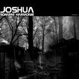 Dj Joshua - Album - Sombre harmonie (Epiteth) 13 Track