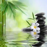 ~ Sound Therapy - Tibetan Bowl Zen ~