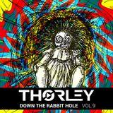 Thorley - Down The Rabbit Hole Vol 9