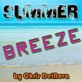 Summerbreeze by Chris DelNova(October 2009)[CHILLOUT HOUSE]