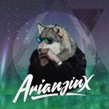 Anti Njegideg #1 - Arianjinx - (Hard Trap, Dubstep)
