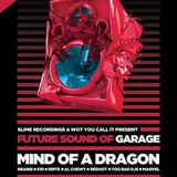 Wot You Call It & Slime Recordings Presents Future Sound Of Garage 2 Album Launch