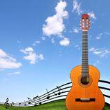 Heart of Nylon Strings