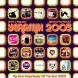 The Dizzy DJ - about a dizzy year - YEARMIX 2005