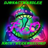 Dj-Nachtwandler-Psy-Travel vs Nachtwrk After Party Live Mix.2012. F.s.O.Nachtwerk Record