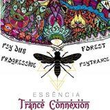 Psytrance Mix #3 (Essência Trance Connexion)