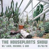 Houseplants (01/10/2018)