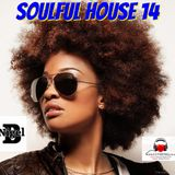NIGEL B (SOULFUL HOUSE MIX 14)