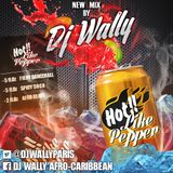 DJ WALLY - HOT LIKE PEPPER 2014 (DANCEHALL, SOCA & AFRO BEATS)
