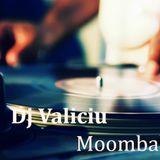 Dj Valiciu -  Moombahton April Promotional Mix
