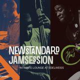 2013 05 Bill Cook's DJ set @ New Standard Jam Session / Edelweiss, Gorlitzer Park, Berlin,DE