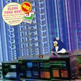 Mix for Tokyo Jusco Night ~雪にかいた RE-EDIT~ / SLENG TENG NEU!