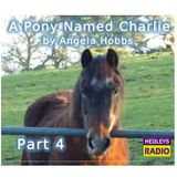 A Pony Named Charlie - Part 4
