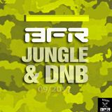 BFR JUNGLE&DNB (love-and-hate-mix)