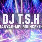 DJ T.S.H 《好心分手 ✘ 我就是这样 ✘ 光辉岁月》 2017 | REmix