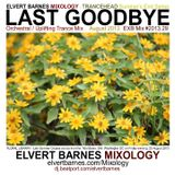 LAST GOODBYE ORCHESTRAL / UPLIFTING TRANCE (END OF SUMMER) AUGUST 2013 MIX