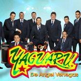 Grupo Yaguaru Exitos