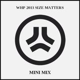 Mini Mix (WHP 2013 SIZE MATTERS Mix)