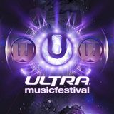 UMF 2013 Unofficial After Mix