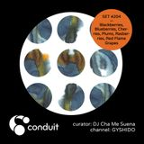 Conduit Set #204 | Blackberries, Blueberries, Cherries... (curated by DJ Cha Me Suena) [GYSHIDO]