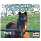 A Pony Named Charlie - Part 1
