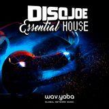 DisqJoe - Essential house.