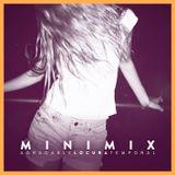 Paniko DJ || Agradable Locura Minimix 2013