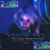 Northern Angel -   Psychedelic Masquerade live @001  [Happy B-Day Art Alien 19-1-18]