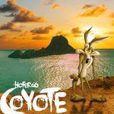 hofer66 - coyote - live at pure ibiza radio 190107