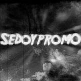DJ SedoypromO - hardstyle 1