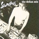 Soundhog - The Delian Mix : Radiophonics and Electrosoniks