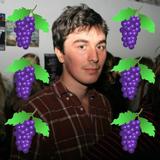 Matt Miller - Grapevine