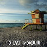 Kiwi Soul: Fat Freddy's Drop/Trinity Roots/Sola Rosa/Electric Wire Hustle/Sorceress/Menagerie/Ladi6