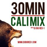 30 Min Cali Mix (March '13)