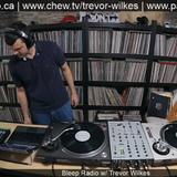 Bleep Radio #349 by Trevor Wilkes (Acid Mix)