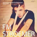 FM STROEMER - Nobody Knows But Me Essential Housemix I February 2013