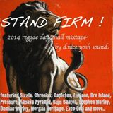 Stand Firm - 2014 Conscious mix by d.nice yosh sound