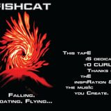 FISHCAT_Falling-Floating-Flying_A_HSøø2_Dedicated-to-CURLEY