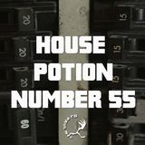 House Potion Number 55