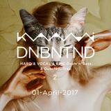 DNBNTND 2 DJ MIX by Kaami (1, April, 2017)