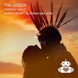 Tim Green - Robot Heart - Burning Man 2014