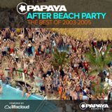 Best of Papaya After Beach Parties 2003-2005