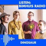 Dinosaur (02-11-2018)