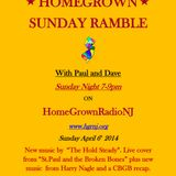 Homegrown Sunday Ramble #14: New Music By The Hold Steady, The Strypes and Harry Nagle. 04/06/2014
