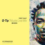 Q-Tip Tribute Live Mix in 2010 FIRST HALF