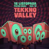 Mole  @ Tekkno Valley, Piętro Niżej, 18.11.2016, Wrocław