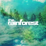 The Rainforest #2 with Binka and Distant Generation