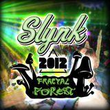 (2012) Slynk - LIVE @ Shambhala Fractal Forest