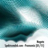 Nogata - Spektrumdnb.com Promomix (01/11)