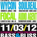 Dj Wycon w/MC Precision and Orb1x LIVE @ Bass & Bliss - 11/03/12